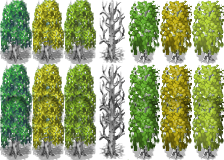 RTPAddonBirchTree.png